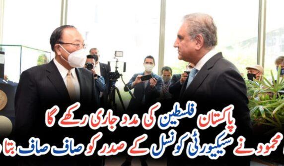 Pakistan will continue to support Palestinians' struggle: FM UrduLight.com