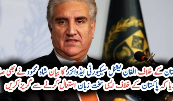 FM Qureshi lashes out at Afghan NSA over undignified remarks against Pakistan UrduLight.com