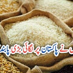 Russia lifts ban on rice imports from Pakistan UrduLight.com