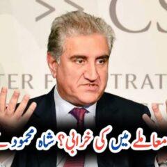 FM Qureshi holds PML-N responsible for spoiling Kulbhushan Jadhav's case UrduLight.com