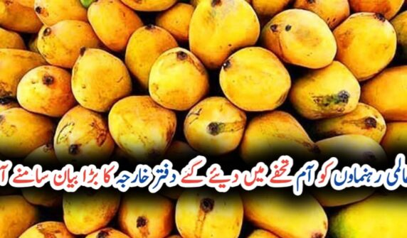 FO denies 'misleading' reports of Pakistani mangoes gifted to foreign dignitaries UrduLight.com