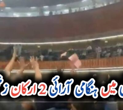 Two injured as PTI, PML-N lawmakers toss copies of budget book at each other in NA UrduLight.com