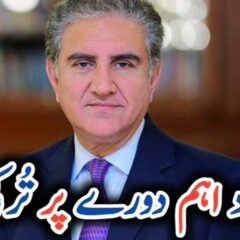 FM Qureshi leaves for Turkey today to attend Antalya Diplomacy Forum UrduLight.com